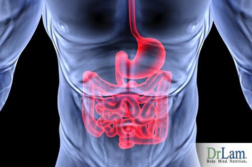 The digestion system can be disrupted due to the stimulants effects