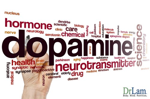 Dopamine release in the body is governed by the biological rhythm