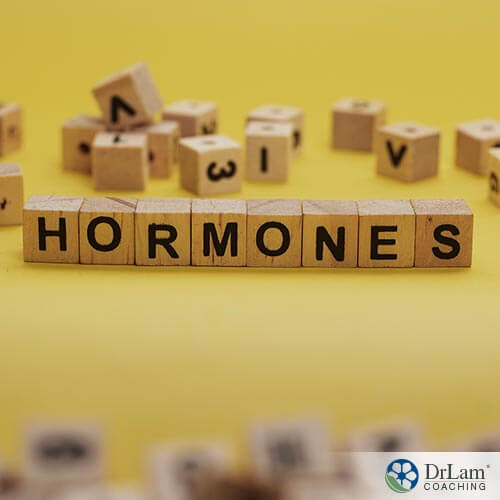 An image of wood letter blocks spelling out the word hormones