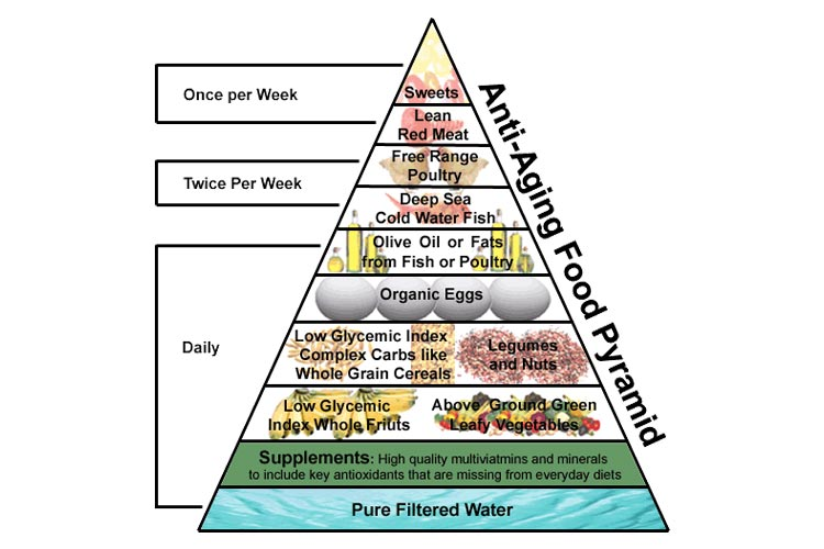 Anti-aging diet food pyramid
