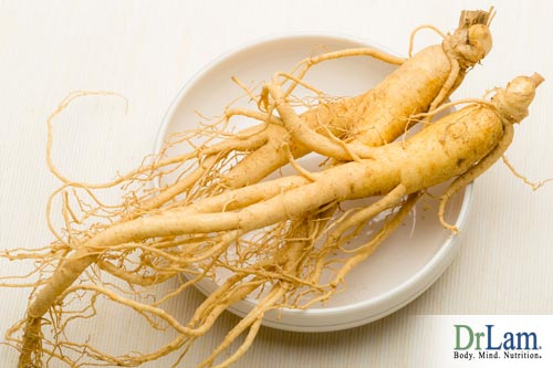 The ginseng plant is a long standing, natural remedy for many ailments
