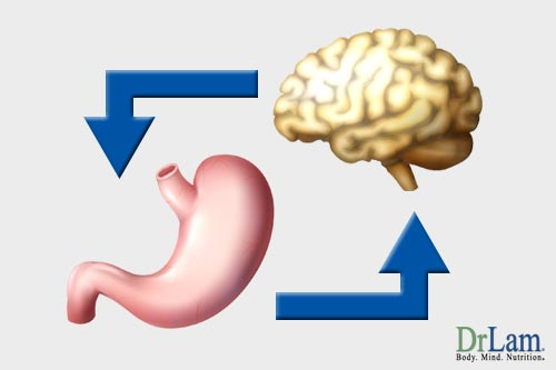 How the mind is effected by healthy stomach bacteria