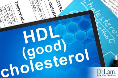 Bad and good cholesterol affected by adrenal fatigue