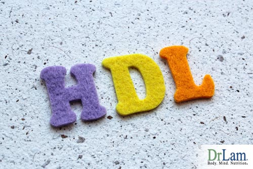 The Big Fat Lie: HDL vs LDL is now believed to be more important than overall levels