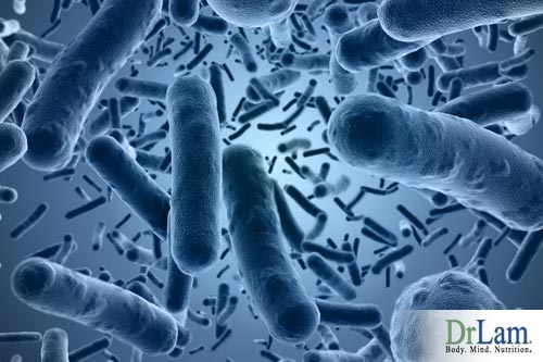The gut microbiome is one of the most populous in our body, keeping a balanced population of healthy gut bacteria is key to good health