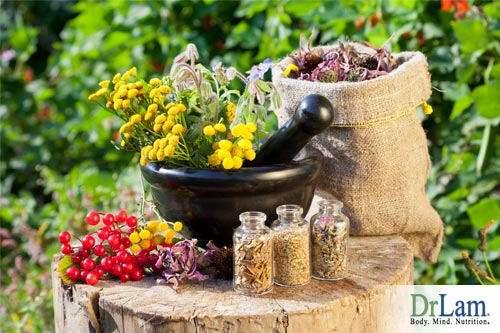 Herbs and health go hand in hand