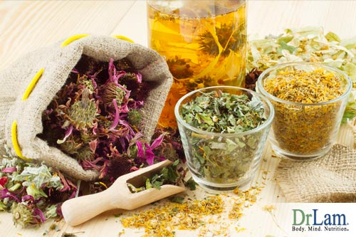 Herbs to shrink fibroids