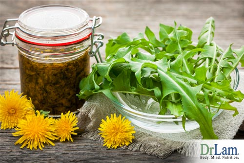 Herbs can be fermented, releasing medicinal properties that can help adrenal fatigue - read more to find out what is fermentation