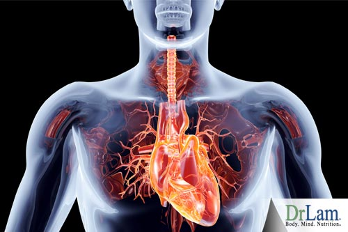 Gastric ulcers are one of the symptoms of infectious heart disease.