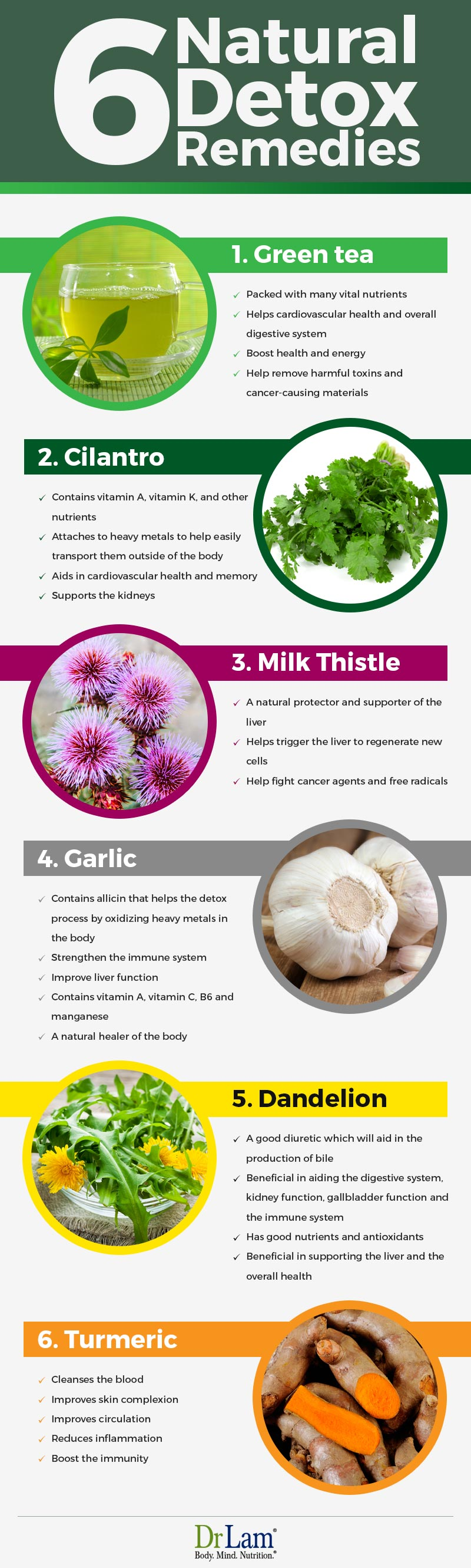 Check out this easy to understand infographic about 6 ingredients to detox your body naturally.