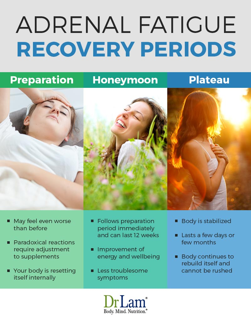 Check out this easy to understand infographic about the periods of Adrenal Fatigue recovery