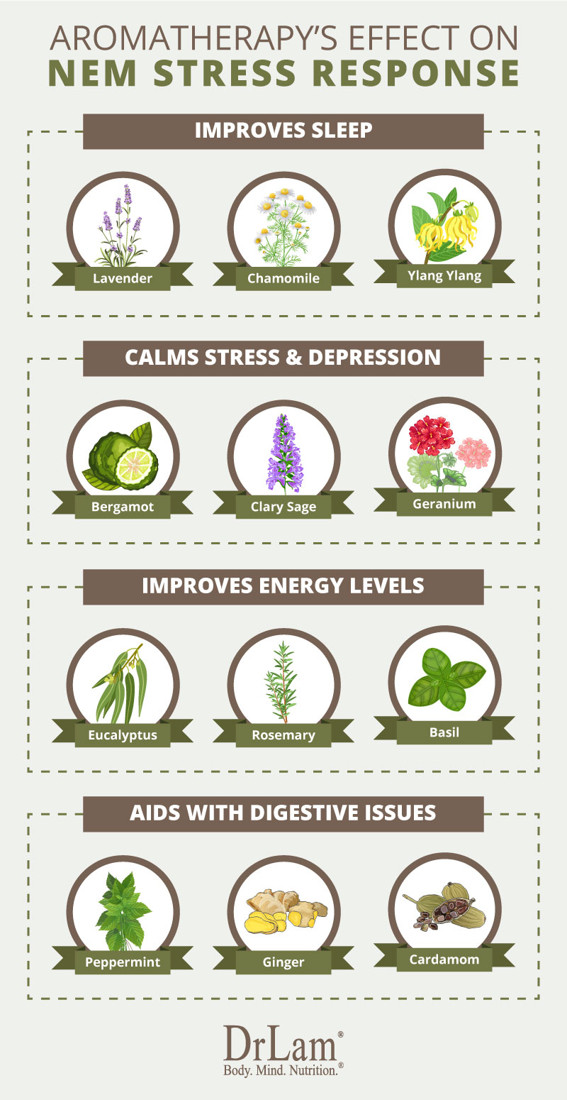 Check out this easy to understand infographic about aromatherapy benefits for NEM stress response