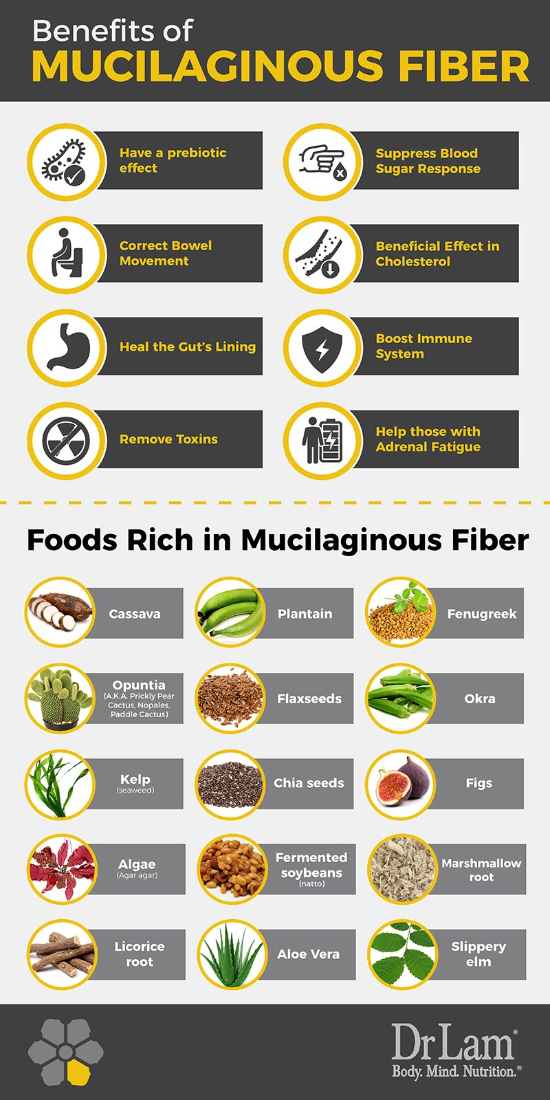Check out this easy to understand infographic about the benefits of mucilaginous fiber