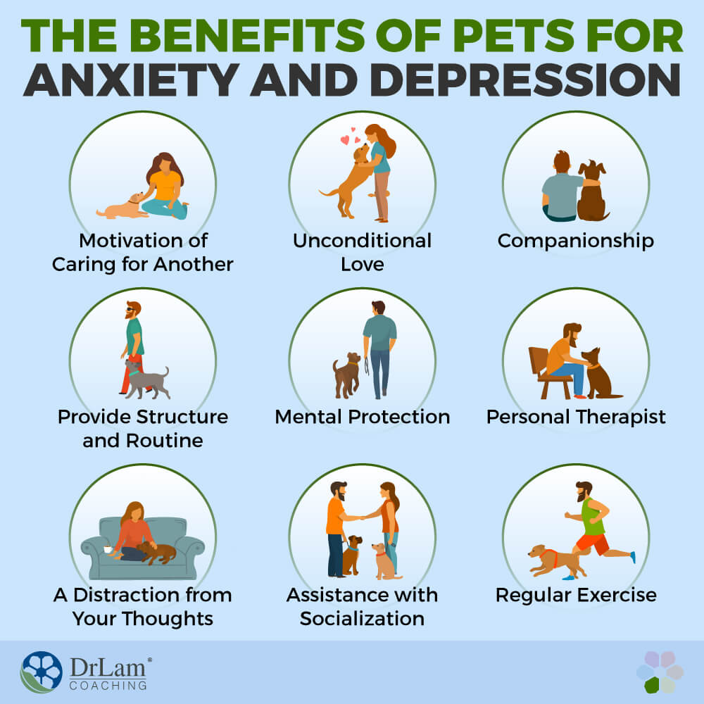 The Benefits of Pets for Anxiety and Depression