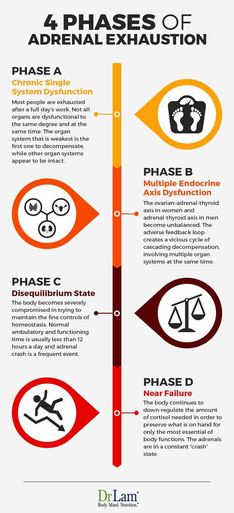 Check out this easy to understand infographic about the 4 phases of Adrenal Exhaustion