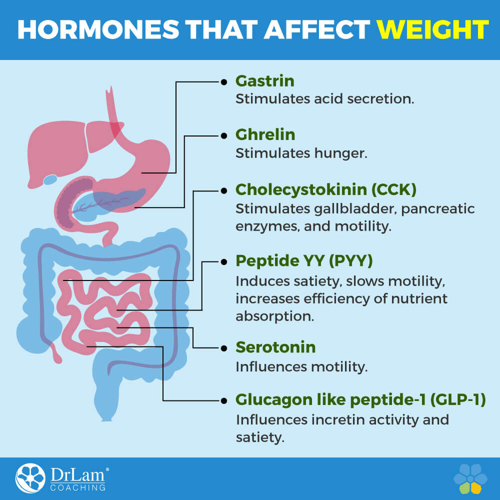 Hormones that Affect Weight