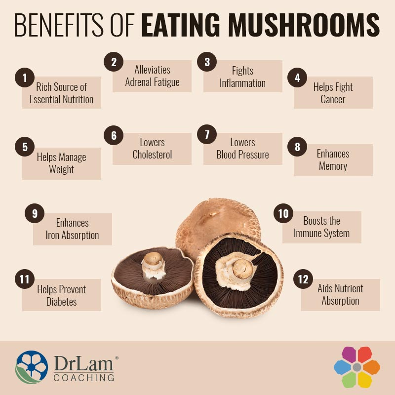 Check out this easy to understand infographic about the benefits of eating mushrooms