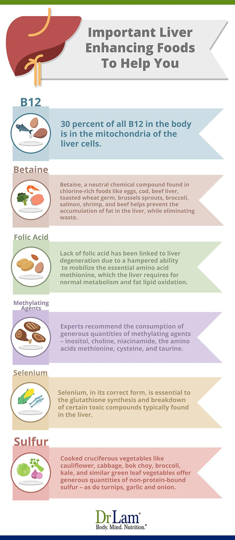 Check out this easy to understand infographic about the important liver enhancing foods to help you