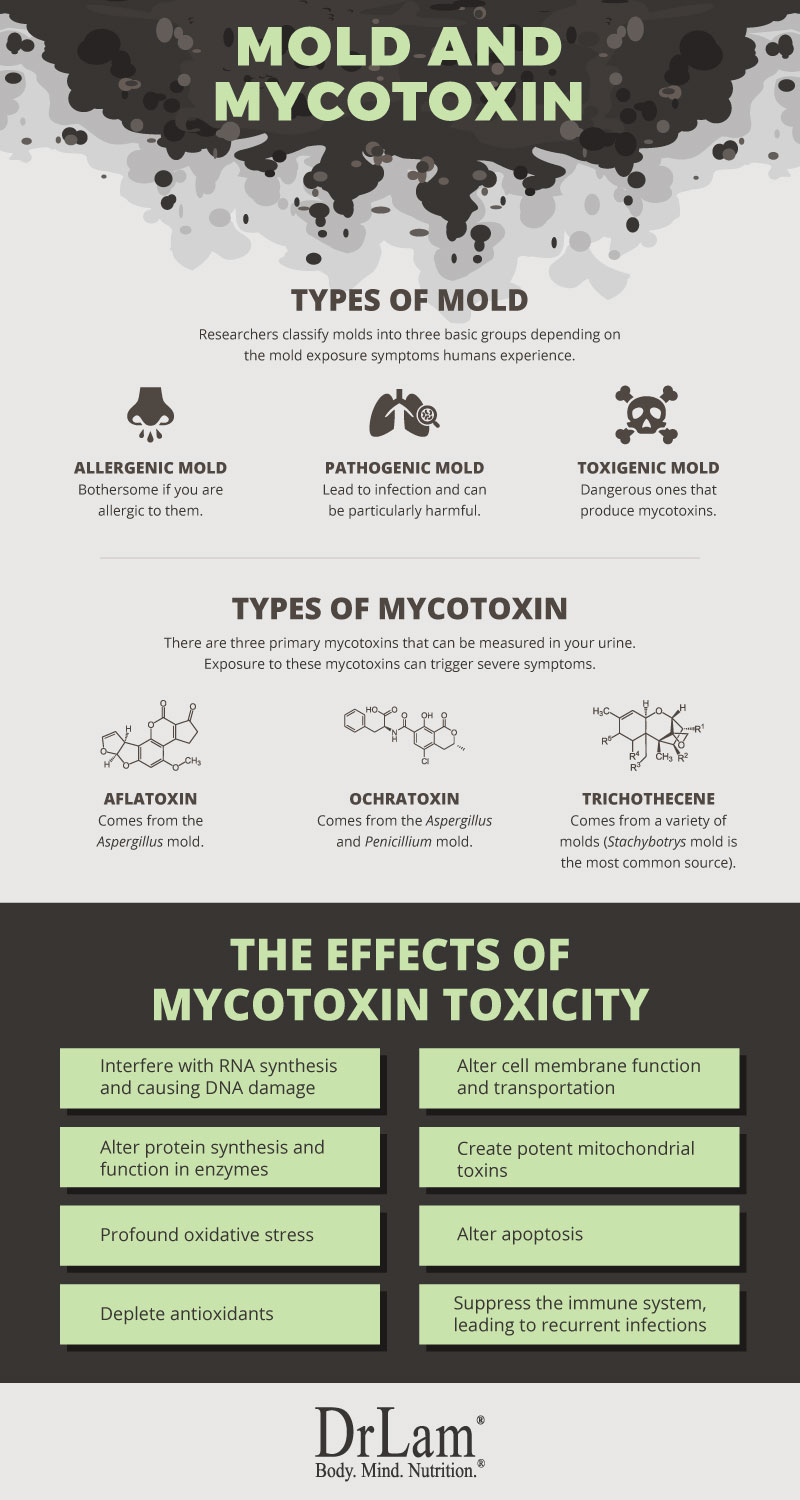 Check out this easy to understand infographic about mold exposure symptoms