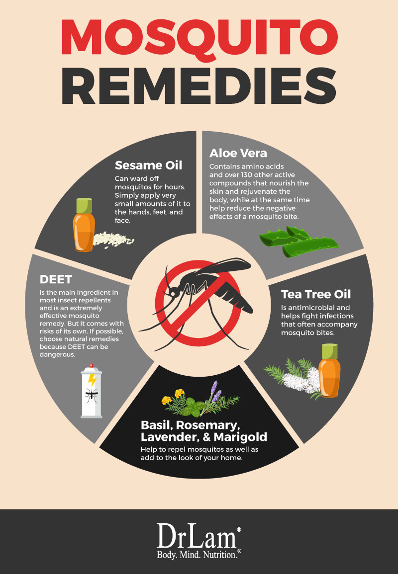 Check out this easy to understand infographic about various kind of mosquito remedy