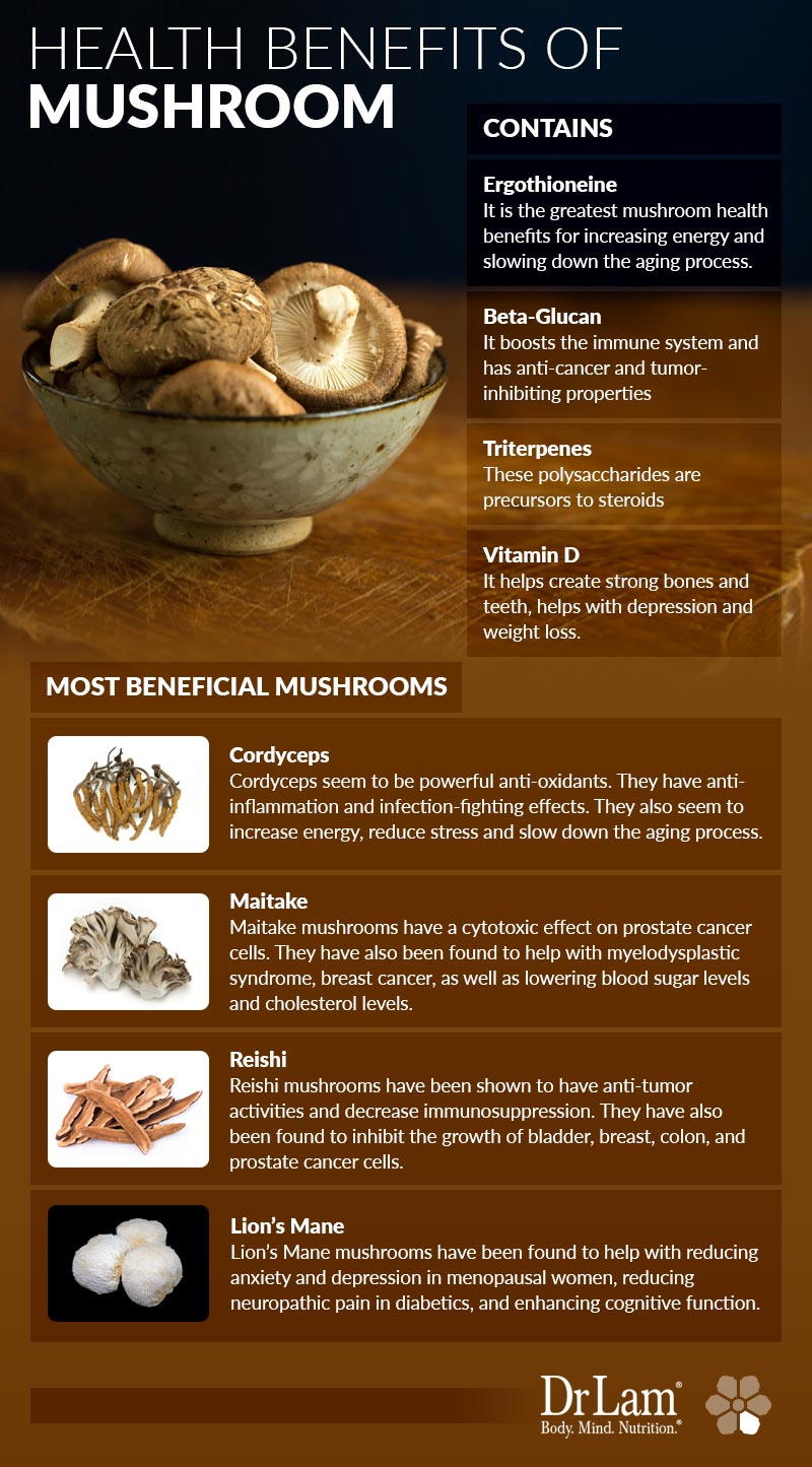Check out this easy to understand infographic about mushroom health benefits