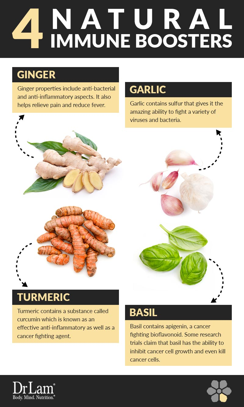 Check out this easy to understand infographic about four natural immune boosters