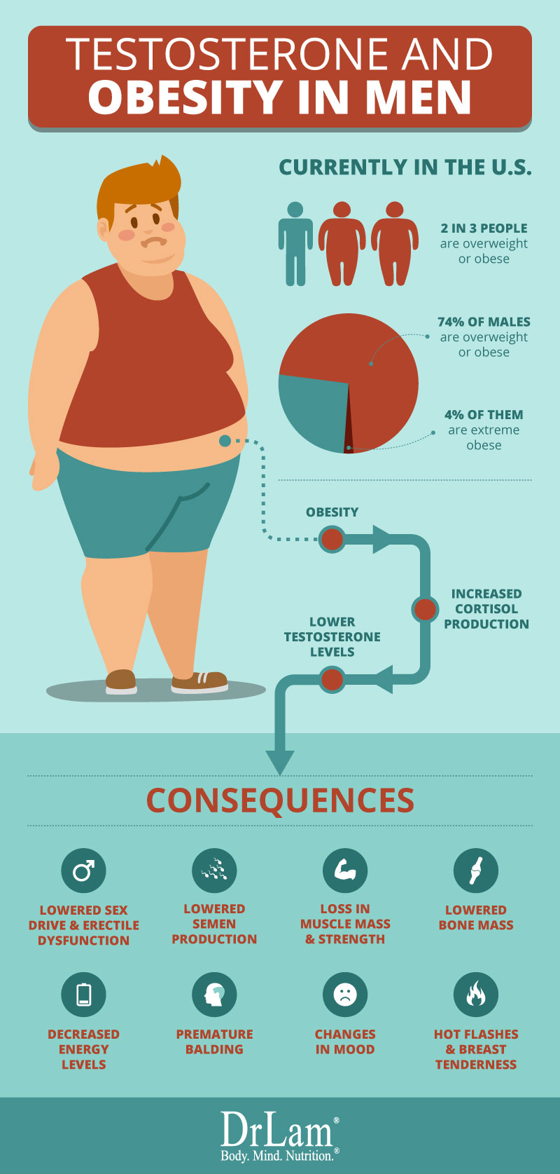 Check out this easy to understand infographic about the testosterone concerns in Obese men
