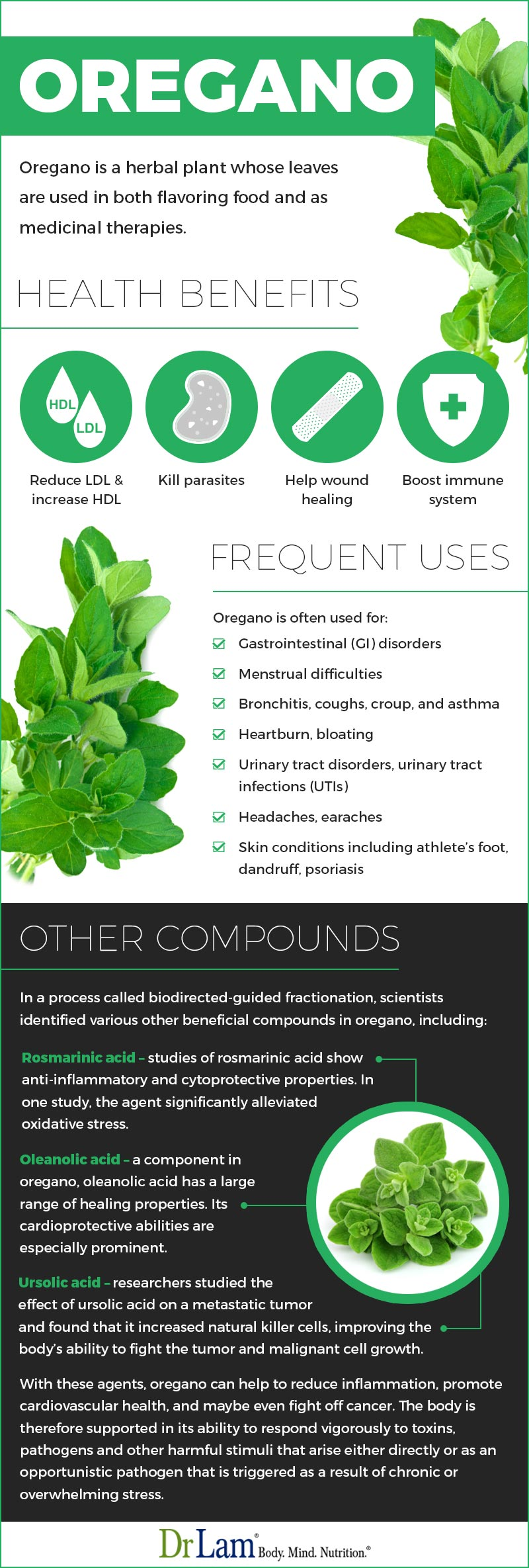 Check out this easy to understand infographic about oregano health benefits