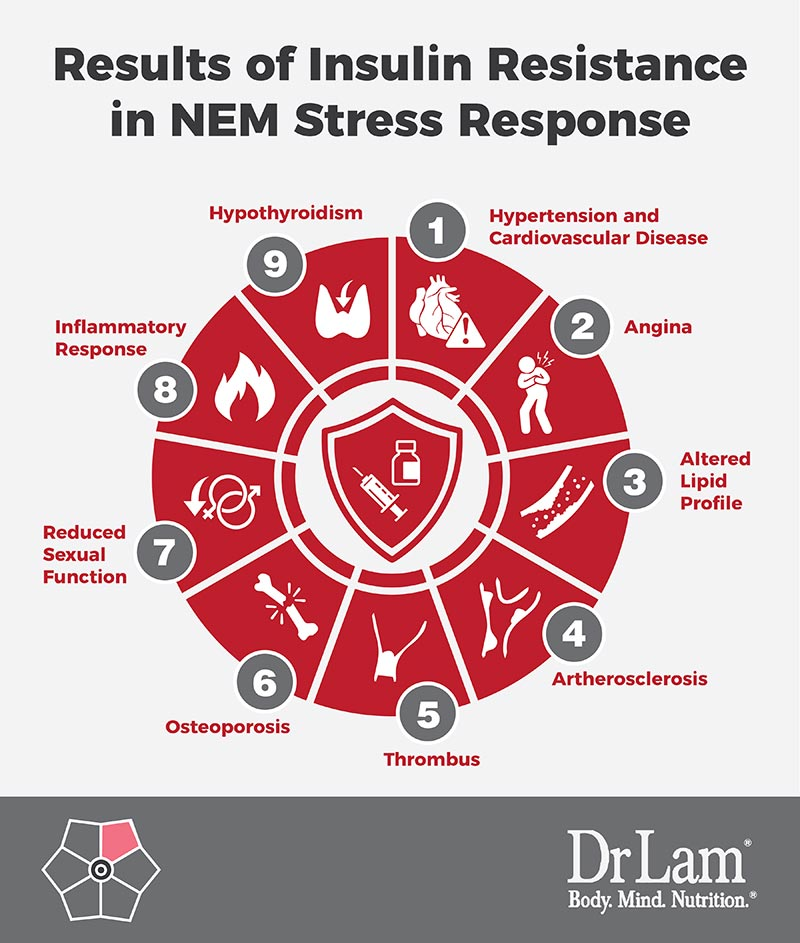 Check out this easy to understand infographic about the results of insulin resistance in NEM Stress Response