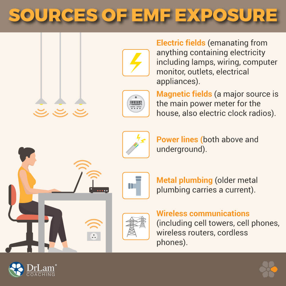 Sources of EMF Exposure