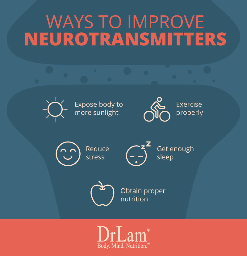 Check out this easy to understand infographic about the ways to improve neurotransmitters