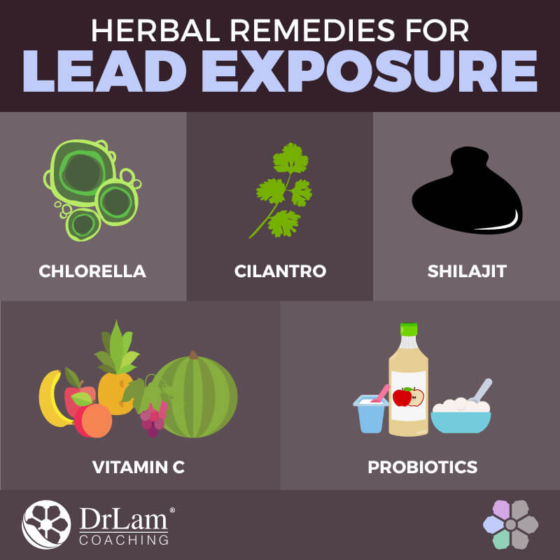 Check out this easy to understand infographic about herbal remedies for lead exposure
