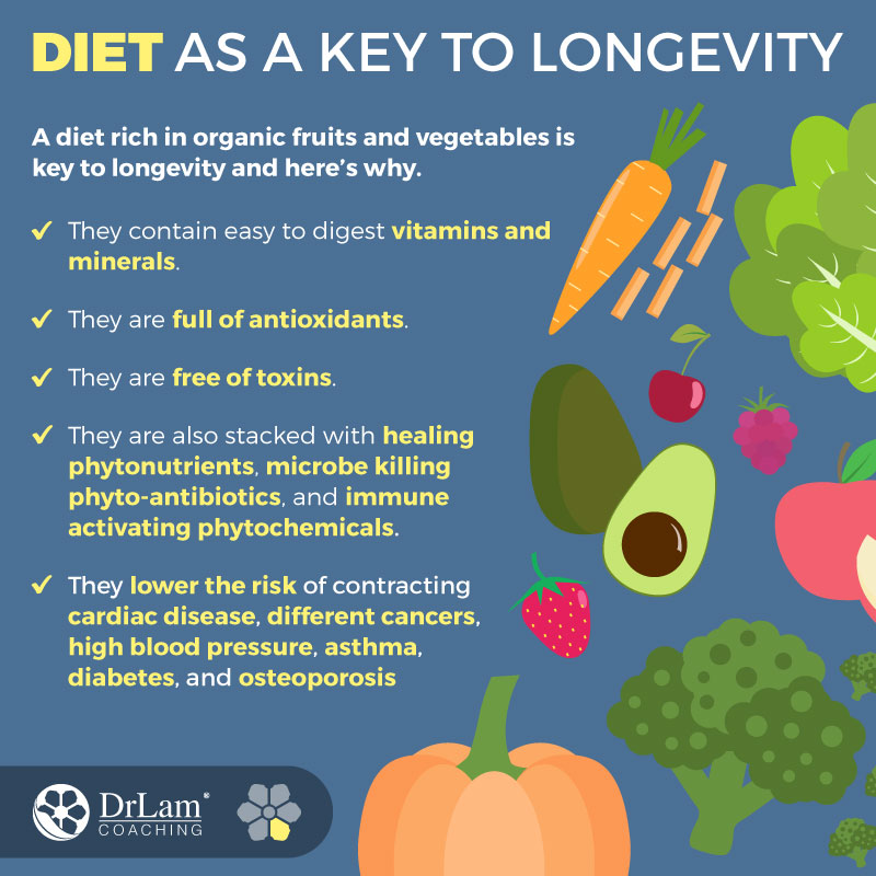 Check out this easy to understand infographic about diet as a key to longevity
