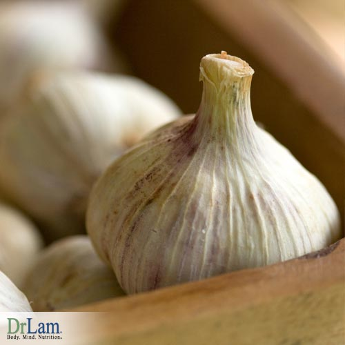 Benefits of Garlic root