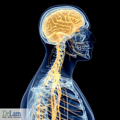 Improving gut health with electromagnetic brain stimulation