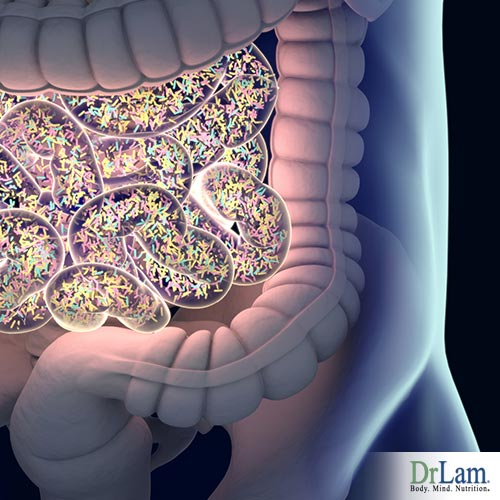 Human microbiome and leaky gut
