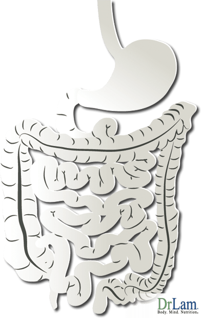Candida in the intestines with Adrenal Fatigue