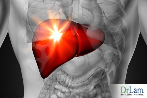 The liver is the most important organ to deal with detoxification and processing of materials from outside the body