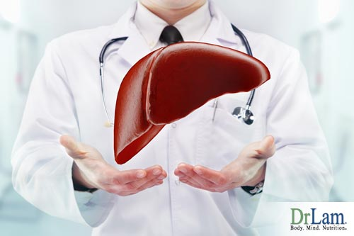 A healthy liver is needed to metabolize progesterone in men