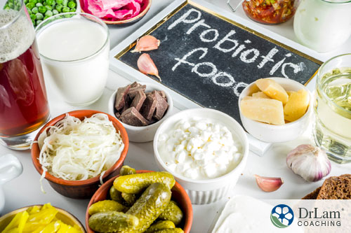 An image of probiotic foods
