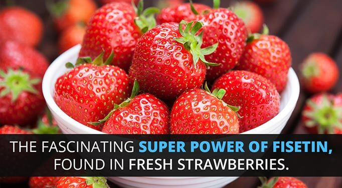Fisetin: The Superfruit of Your Strawberry Season