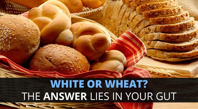 Whole Wheat Bread vs. White Bread: The Truth Is In Your Gut