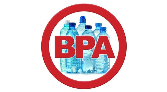 BPA effects