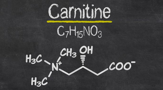 Carnitine vs acetyl carnitine: Find out what the differences are.