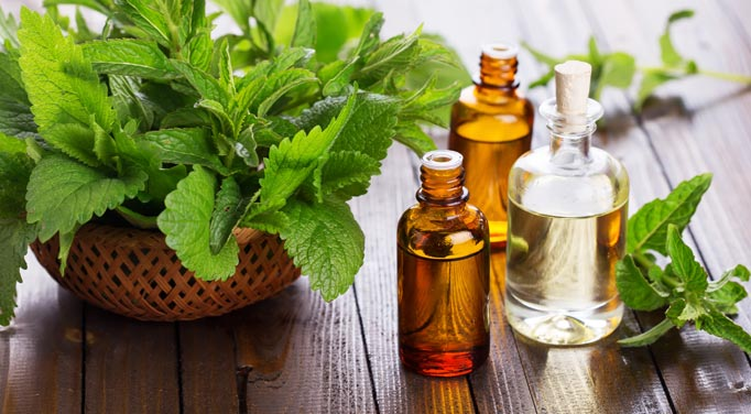A Congested chest can benefit from Peppermint oil