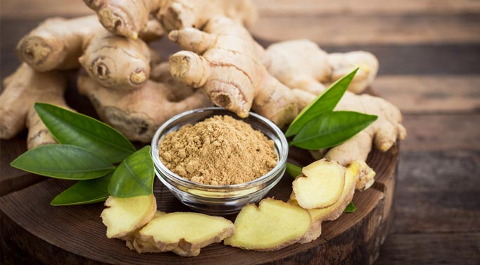 Ginger properties that benefit human health have been known for many centuries