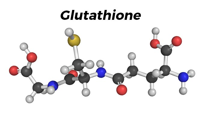 astonishing glutathione benefits: fighting chronic illness and fatigue, Skeleton