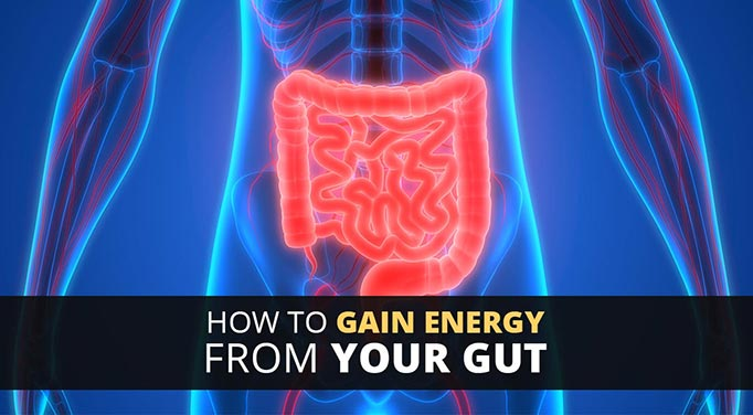 improve gut microbiome