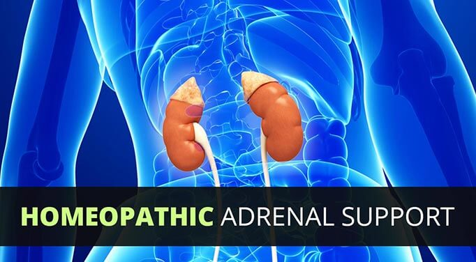 Natural adrenal support