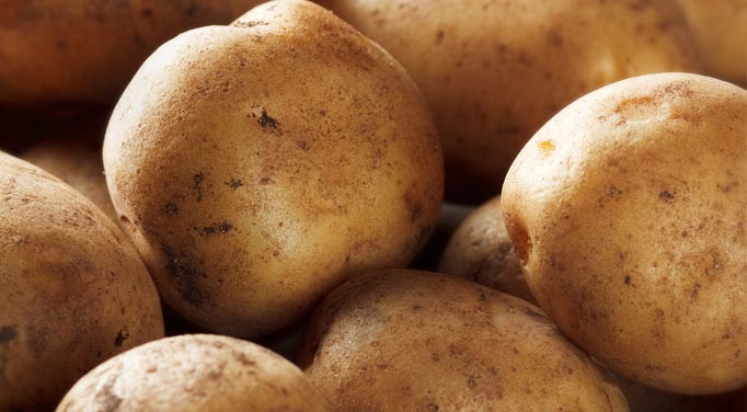 Potatoes that can be used for potato juice